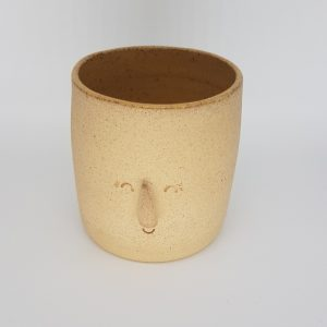 Small planter with face design